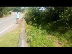 Tangle River resident Ms Pearl points to the spot where Watkins fell to his death.